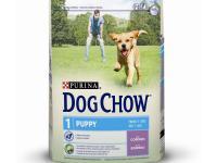 Dog chow puppy jagnjetina 14 kg - 2800 dinara