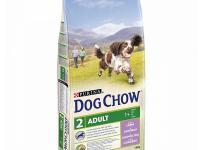 Dog chow adult 14 kg jagnjetina - 2600 dinara