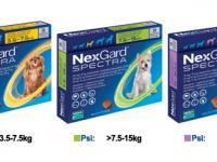 Nexgard spectra, sva pakovanja