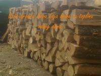 Hrast tvrdo drvo
